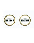 Boston Bruins Ballmarker